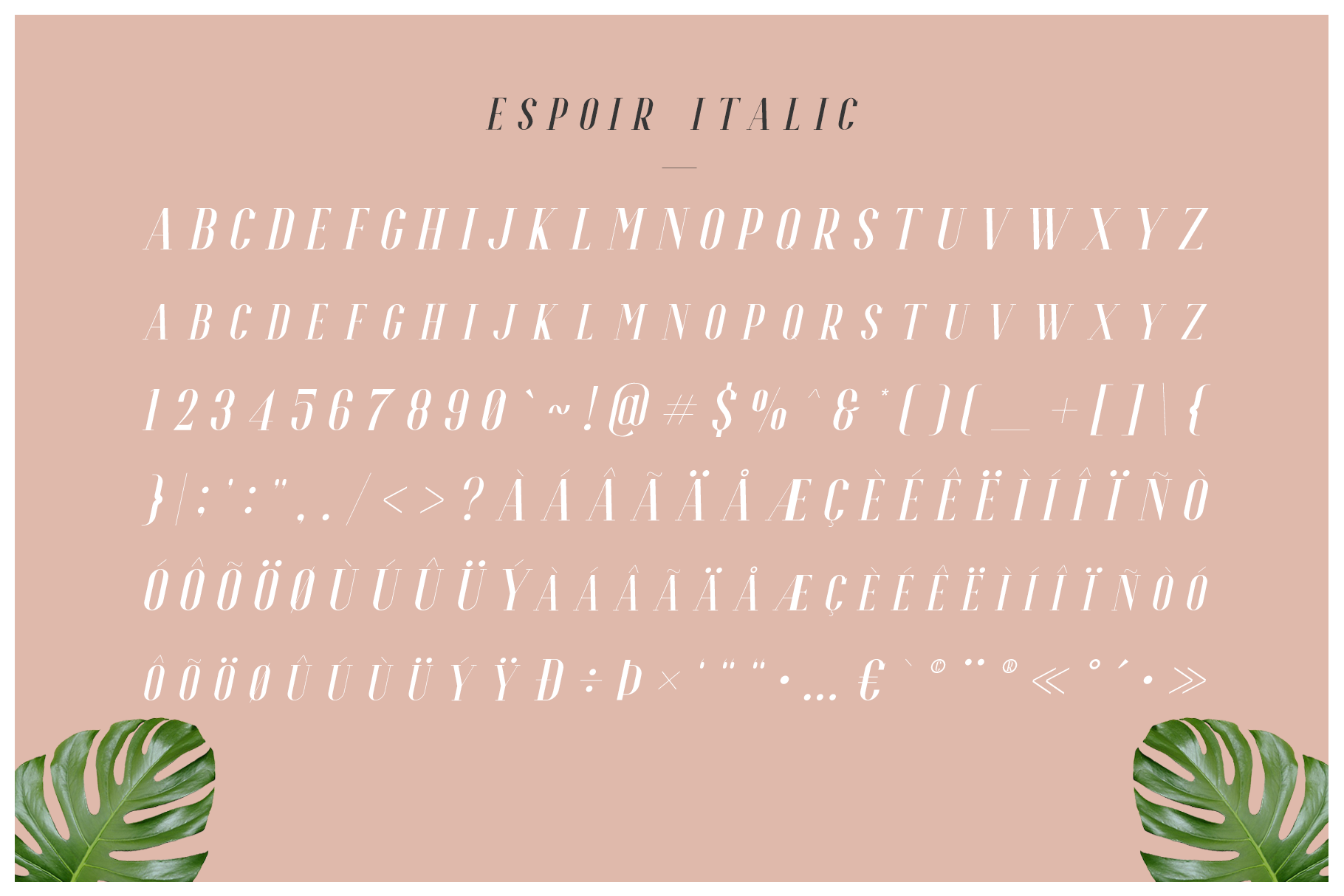 Espoir Serif Font Family example image 7