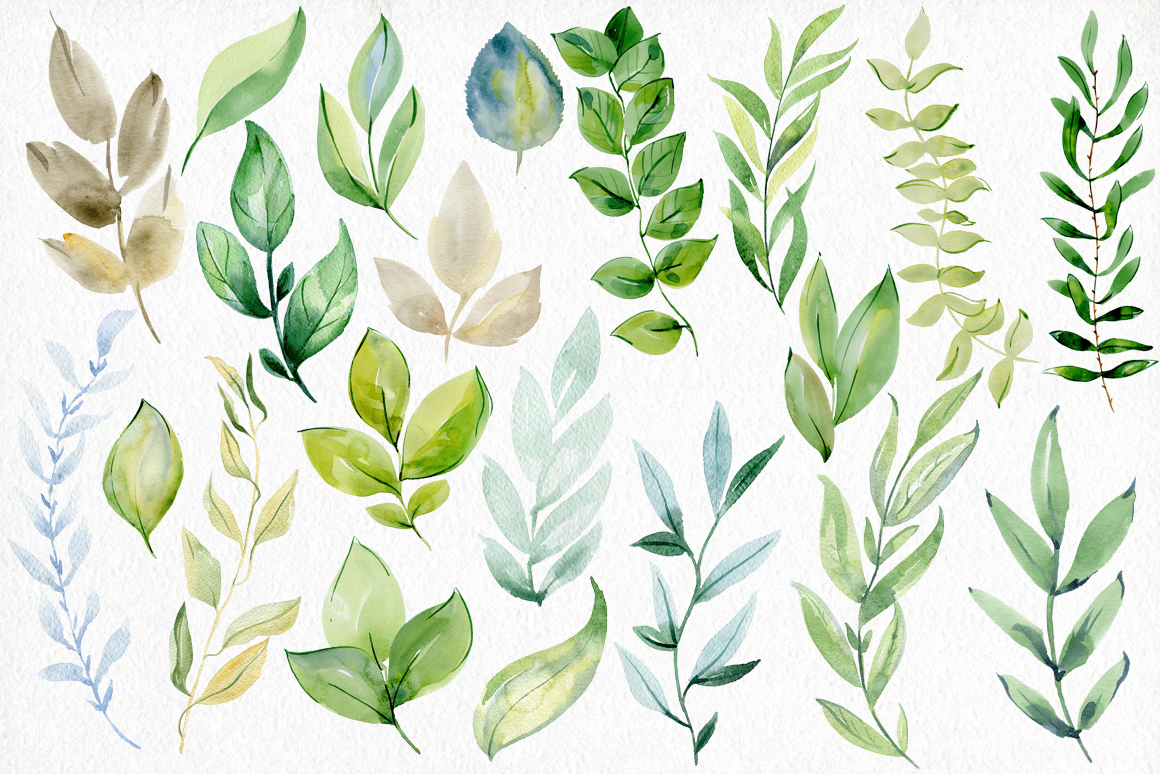 Watercolor leaves clipart. example image 2