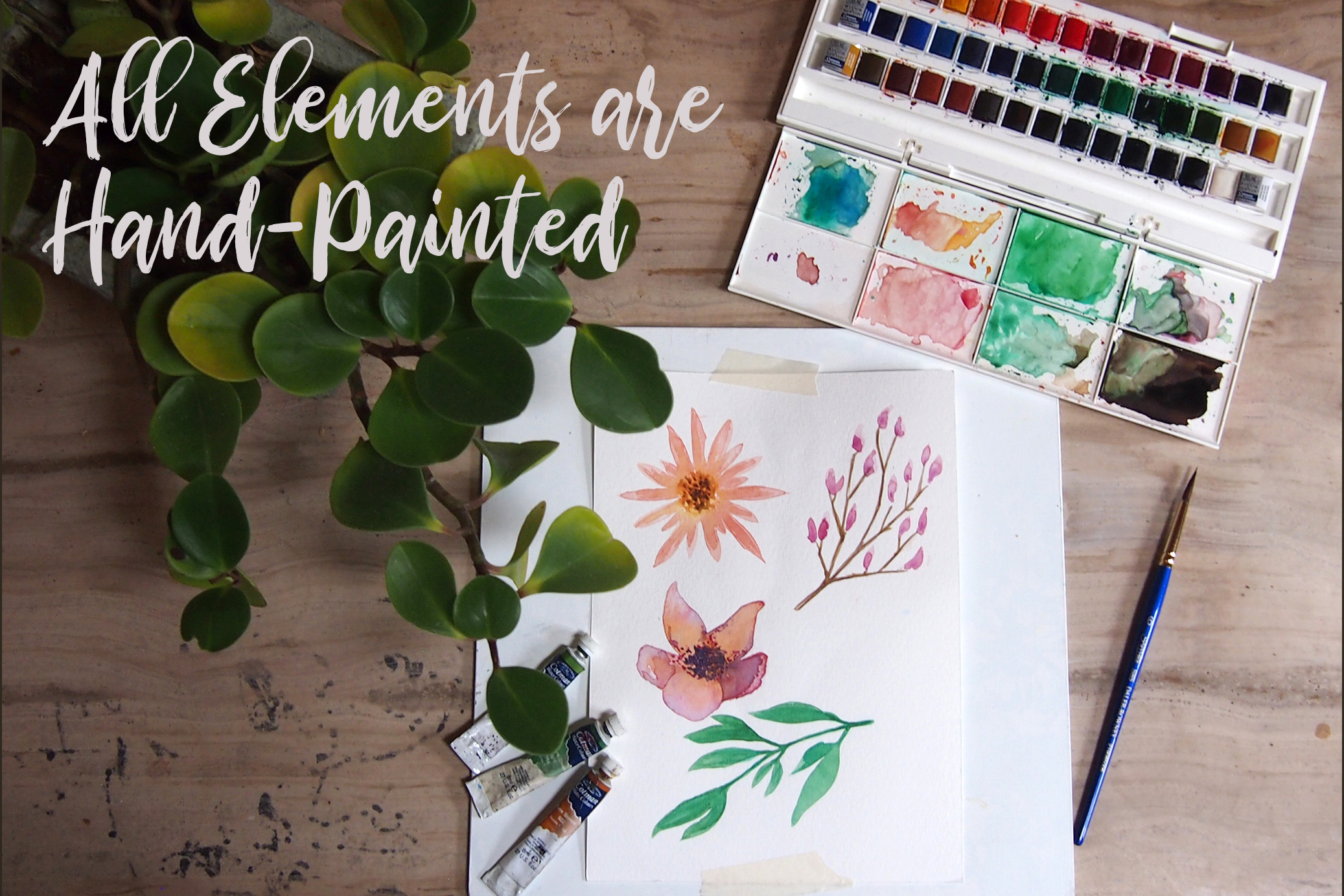 Watercolor Floral Essence Clip Art Pack example image 5