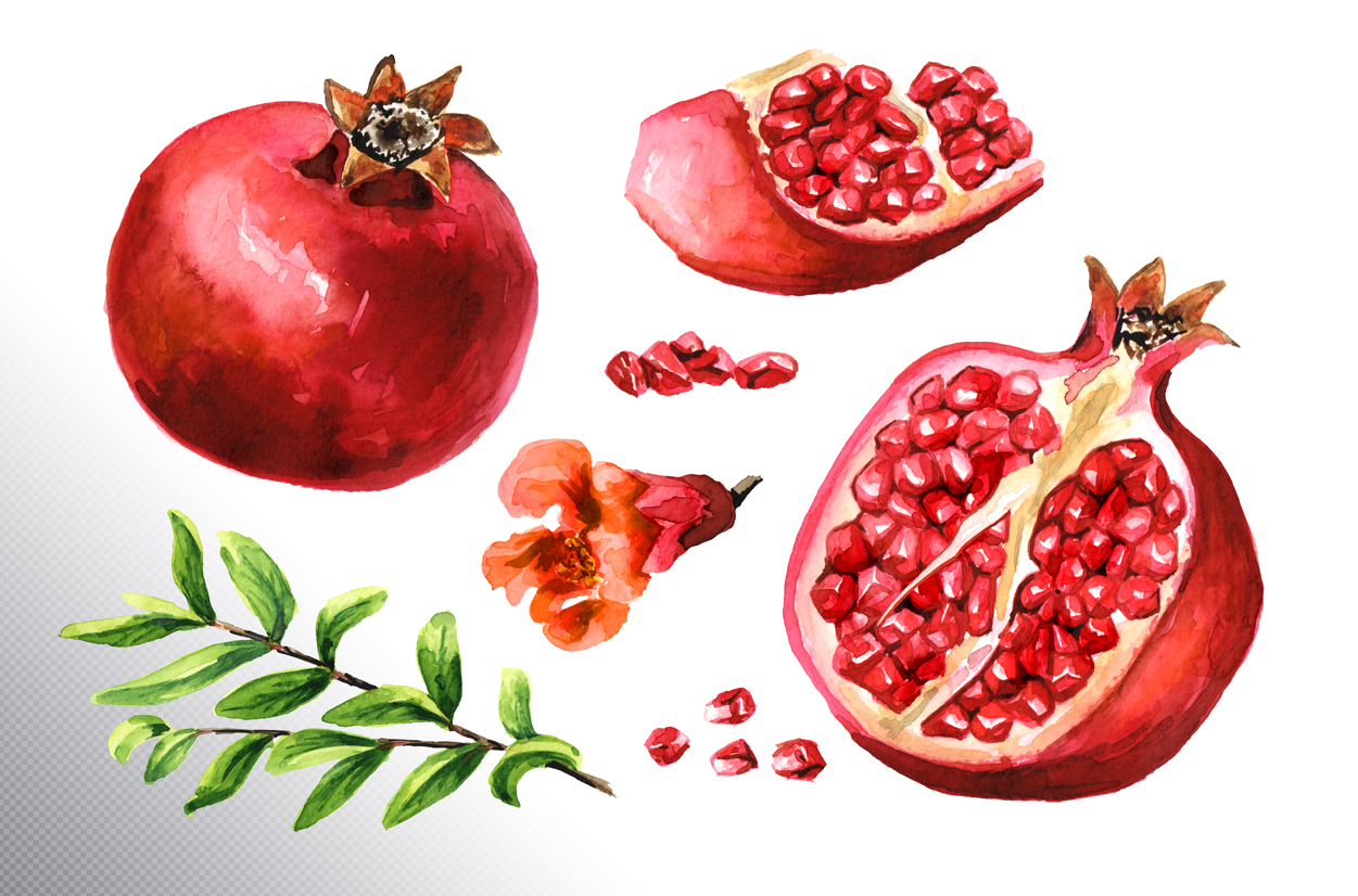 Pomegranate. Watercolor collection example image 8