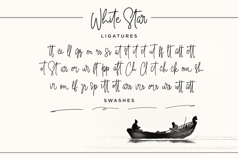 White Star- Chic Handwritten font example image 3