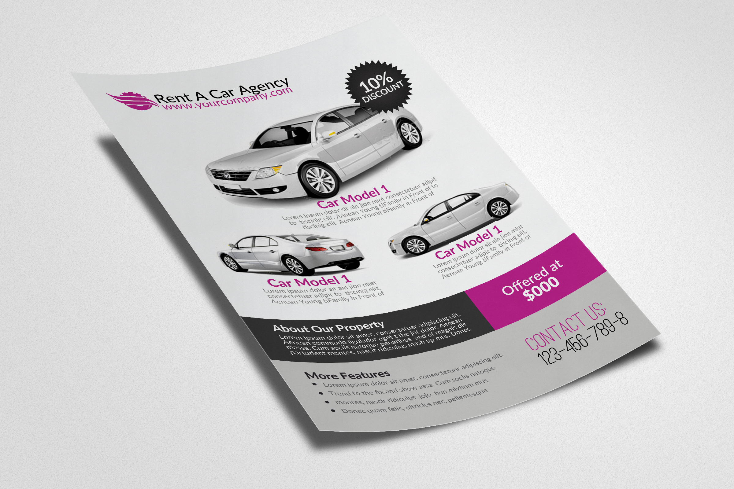 Rent A Car Flyer example image 3