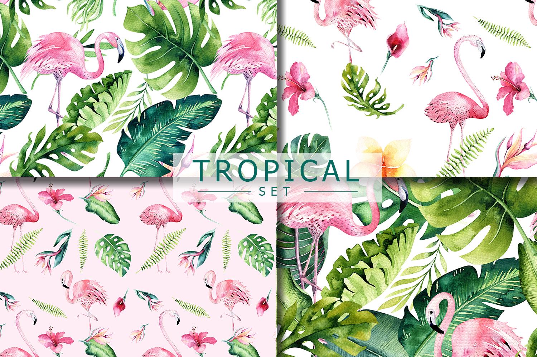 Tropical set II. Flamingo collection example image 5
