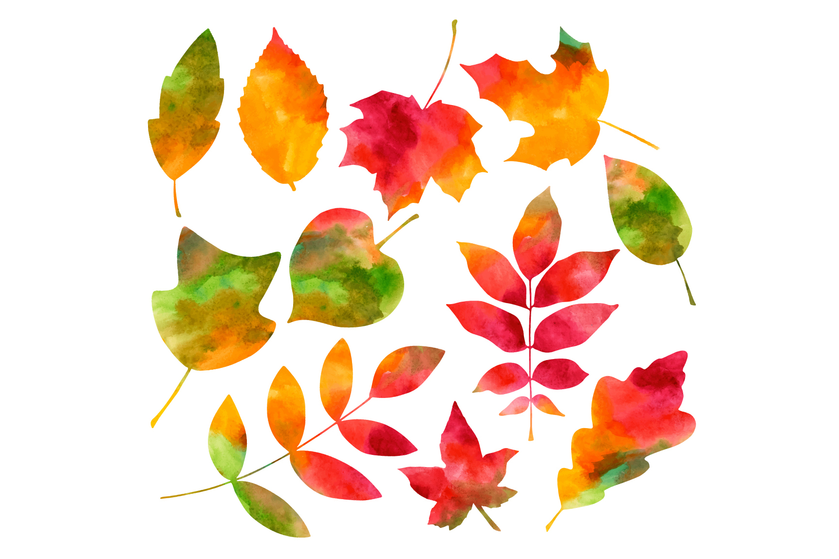 Watercolor Autumn Leaves example image 2