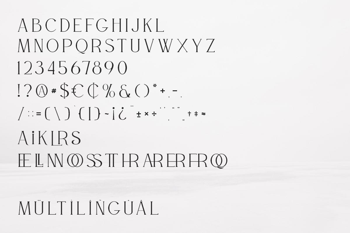 WILLSON - Clean Serif example image 10