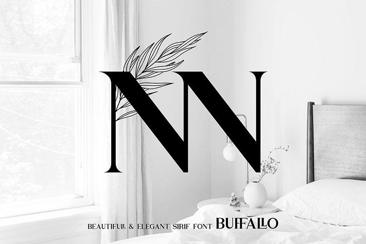Buffallo Elegant Serif Font example image 7
