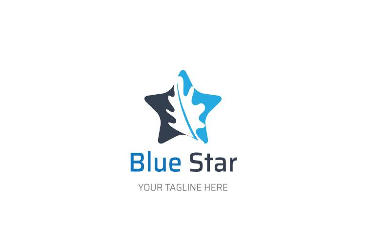 Star Shape Logo Design example image 1