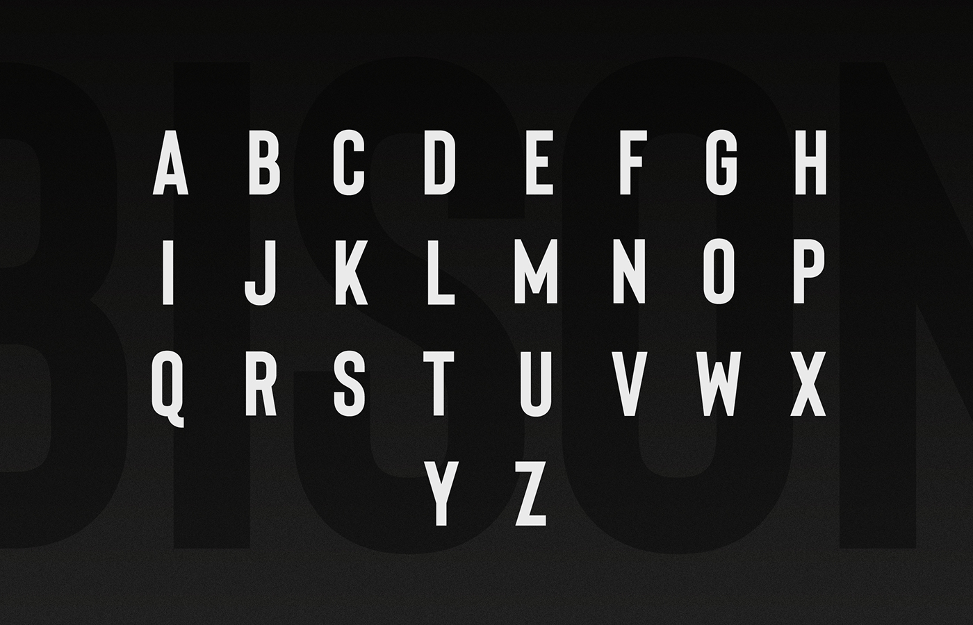 Bison - A powerful font example image 12