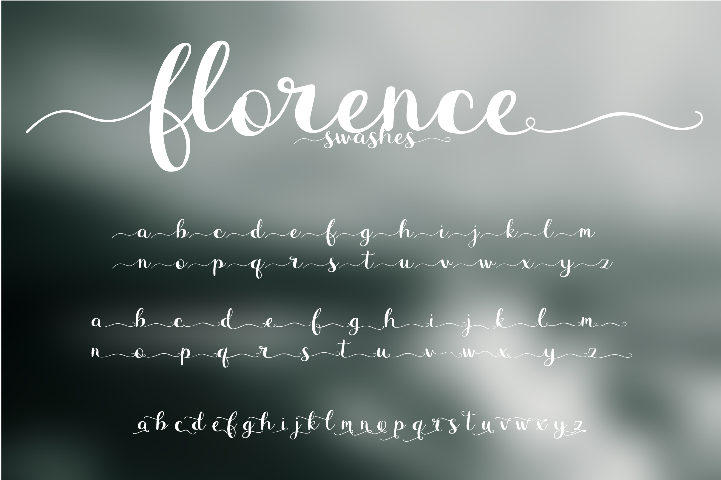 Florence Font Duo example image 6