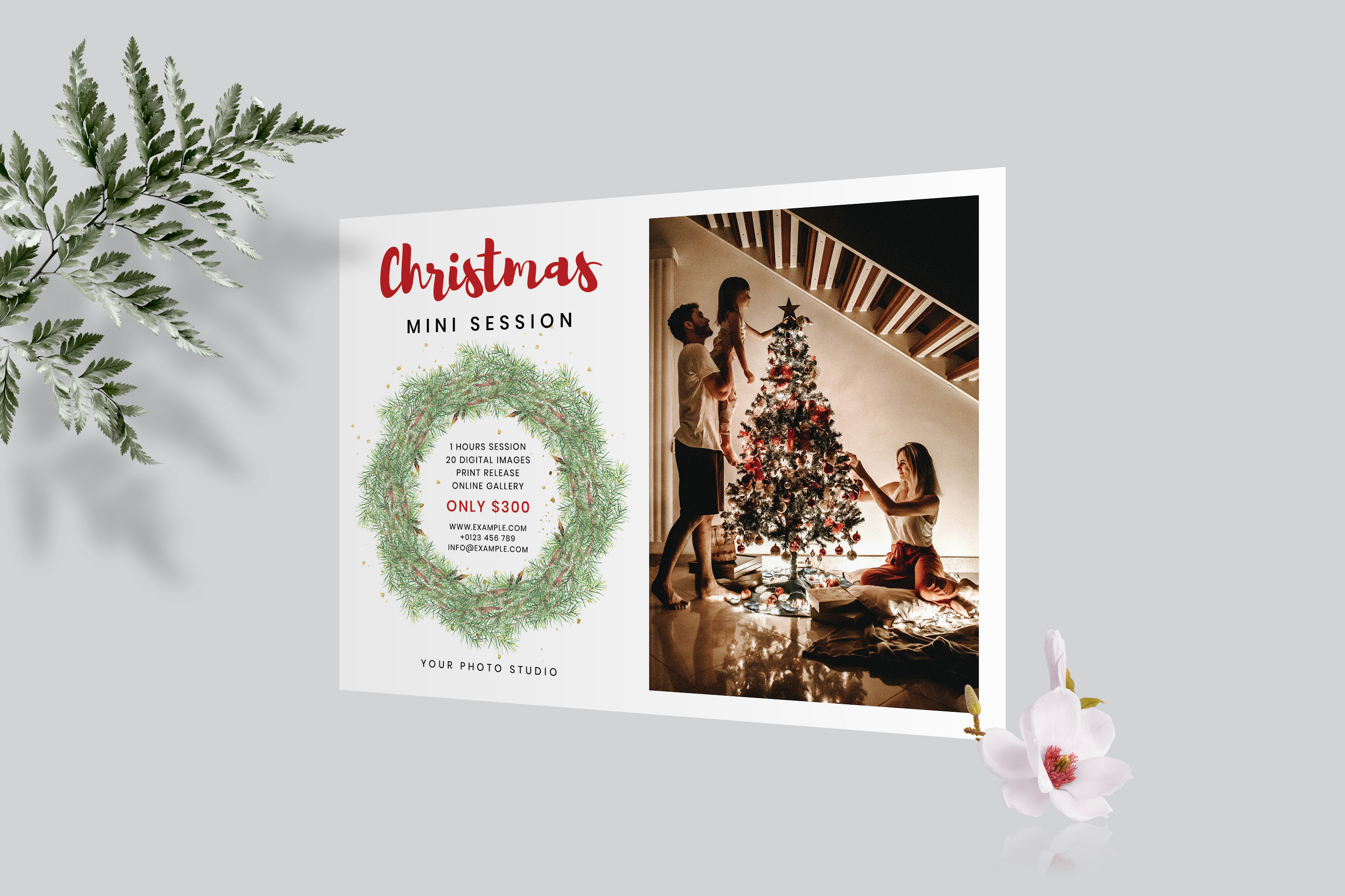 Christmas Mini Session Template example image 5