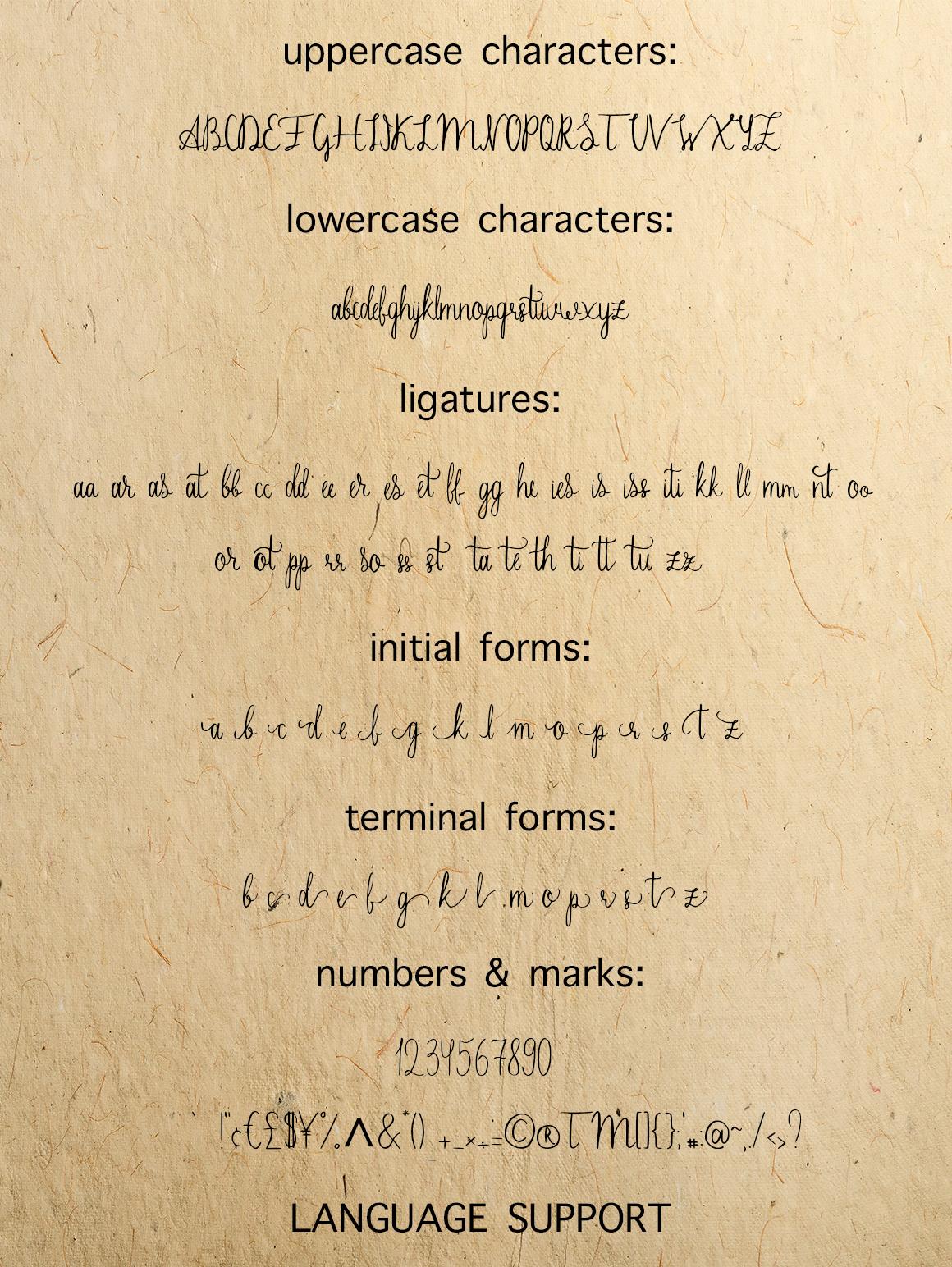 Sherlock calligraphy script font example image 5