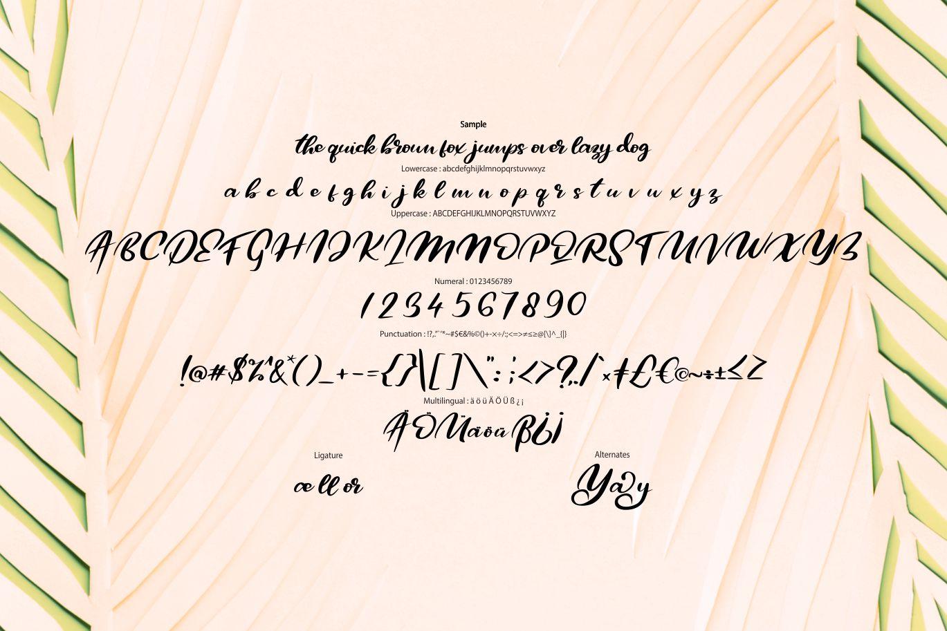 Qors | Minimalism Script Font example image 6