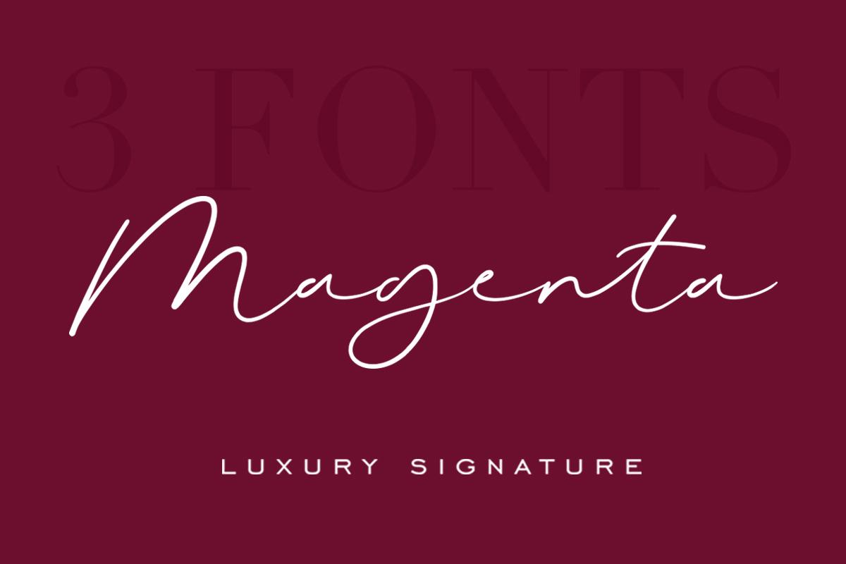 Magenta - 3 Luxury Signature Font example image 15