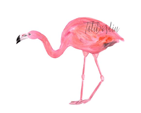 Watercolor Flamingoes Clip Art+Print example image 3