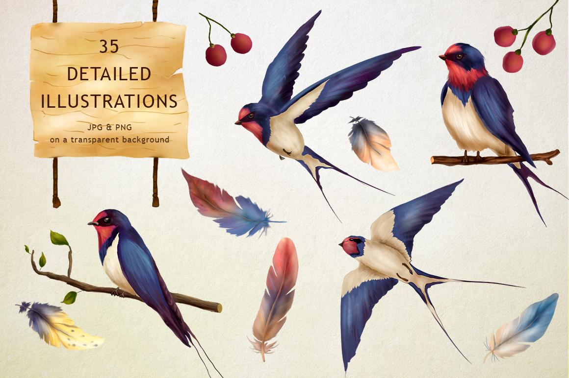 Swallow springs. Gentle graphics set. example image 2