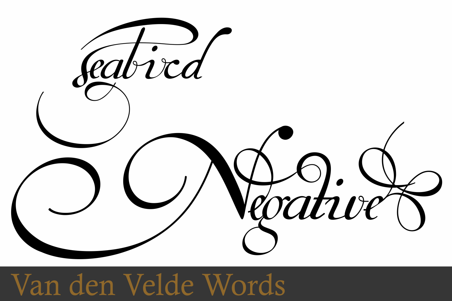 Van Den Velde Words example image 4