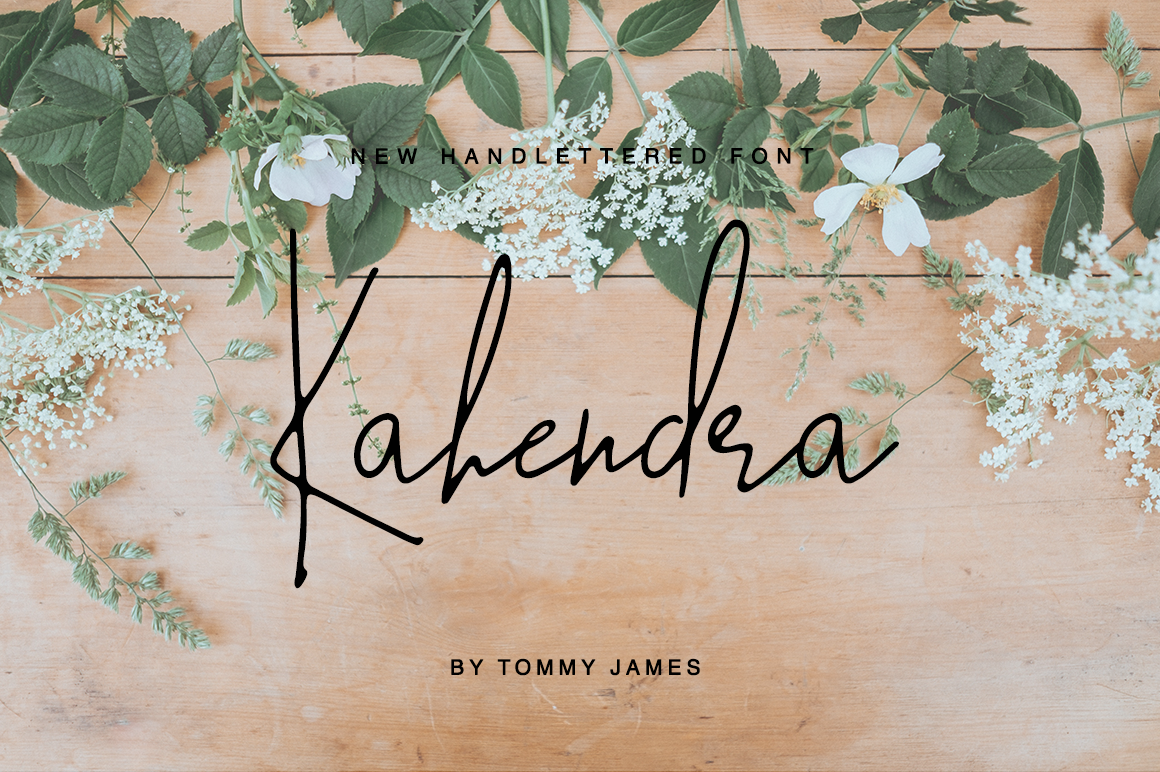 40 in 1 font bundle by Tommy James example image 11