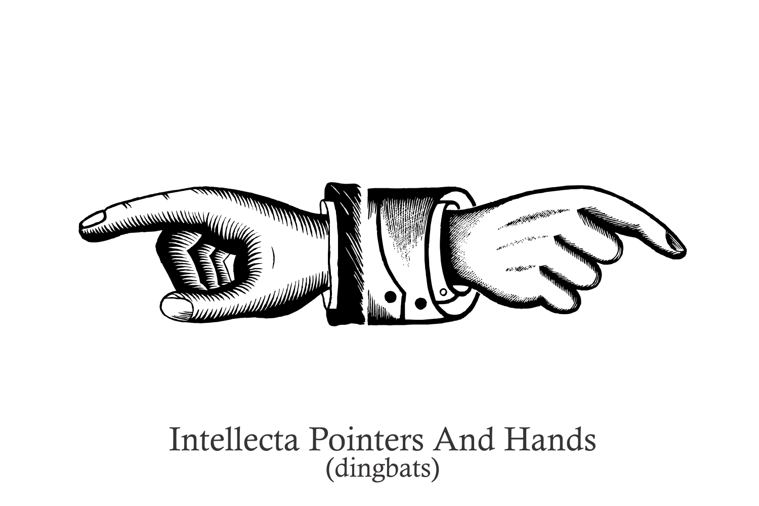 Intellecta Pointers And Hands example image 3
