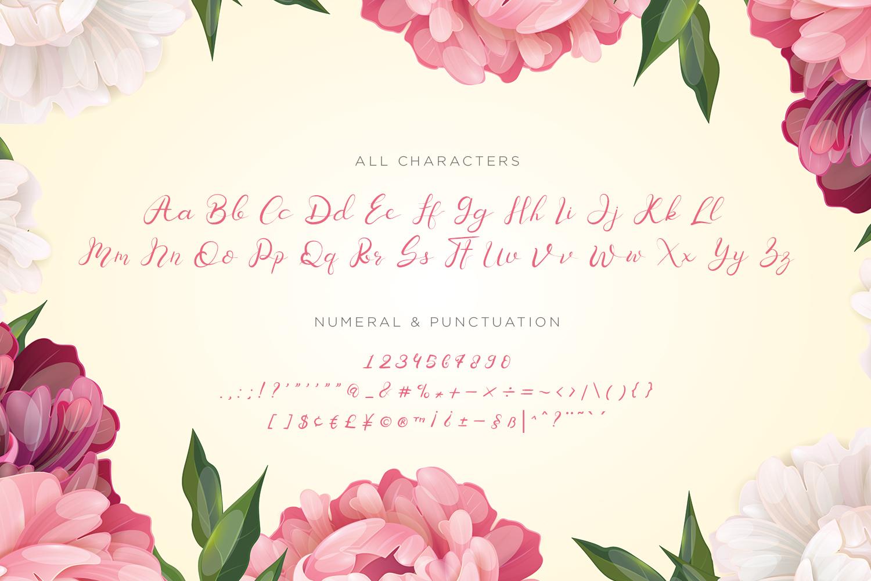 Senoritta - Beautiful Script Font example image 10