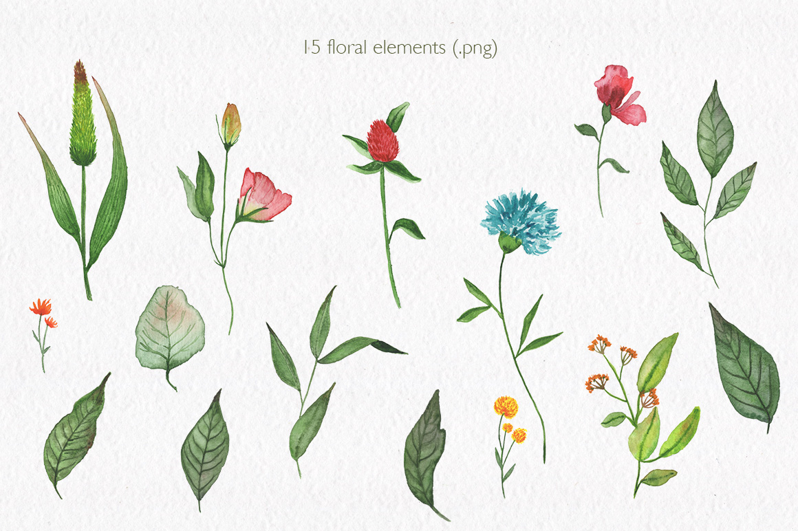 Summer florals. Watercolor floral collection. example image 2