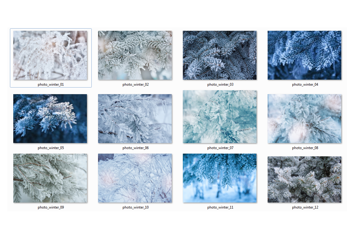 Winter Photo Pack example image 3