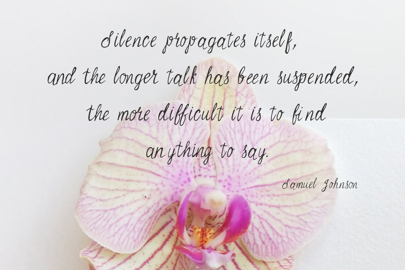 Azalia Font example image 5