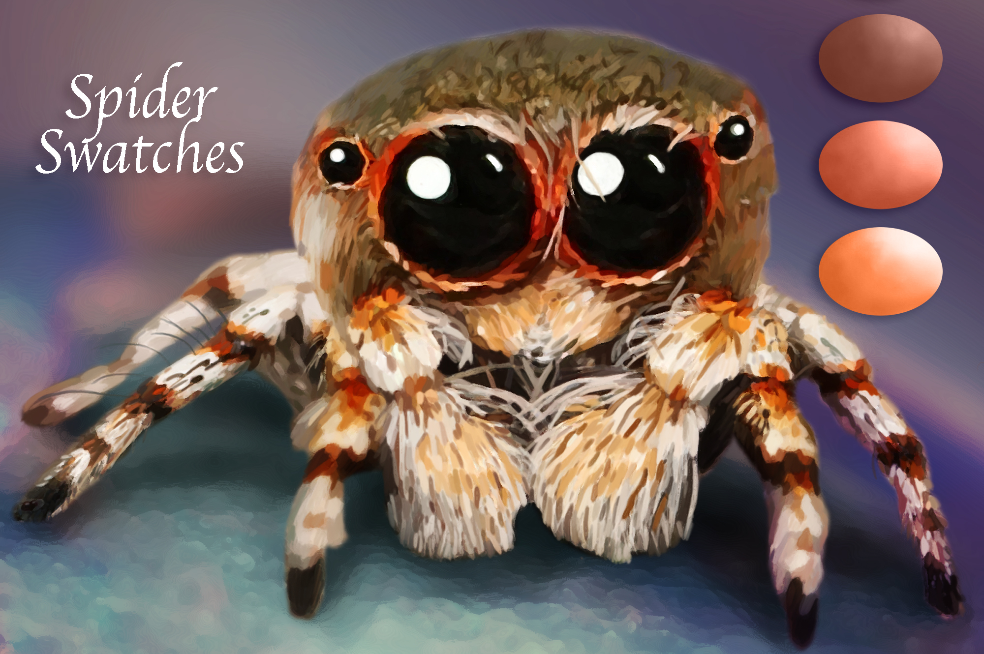 Spider Swatches example image 2
