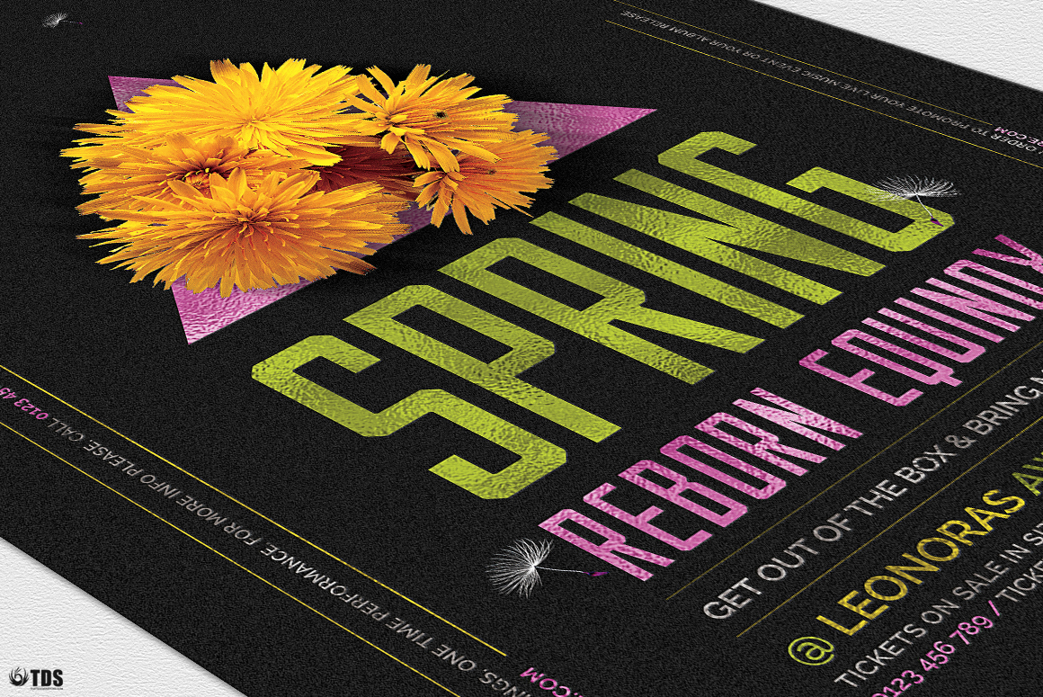 Spring Equinox Flyer Template V6 example image 6