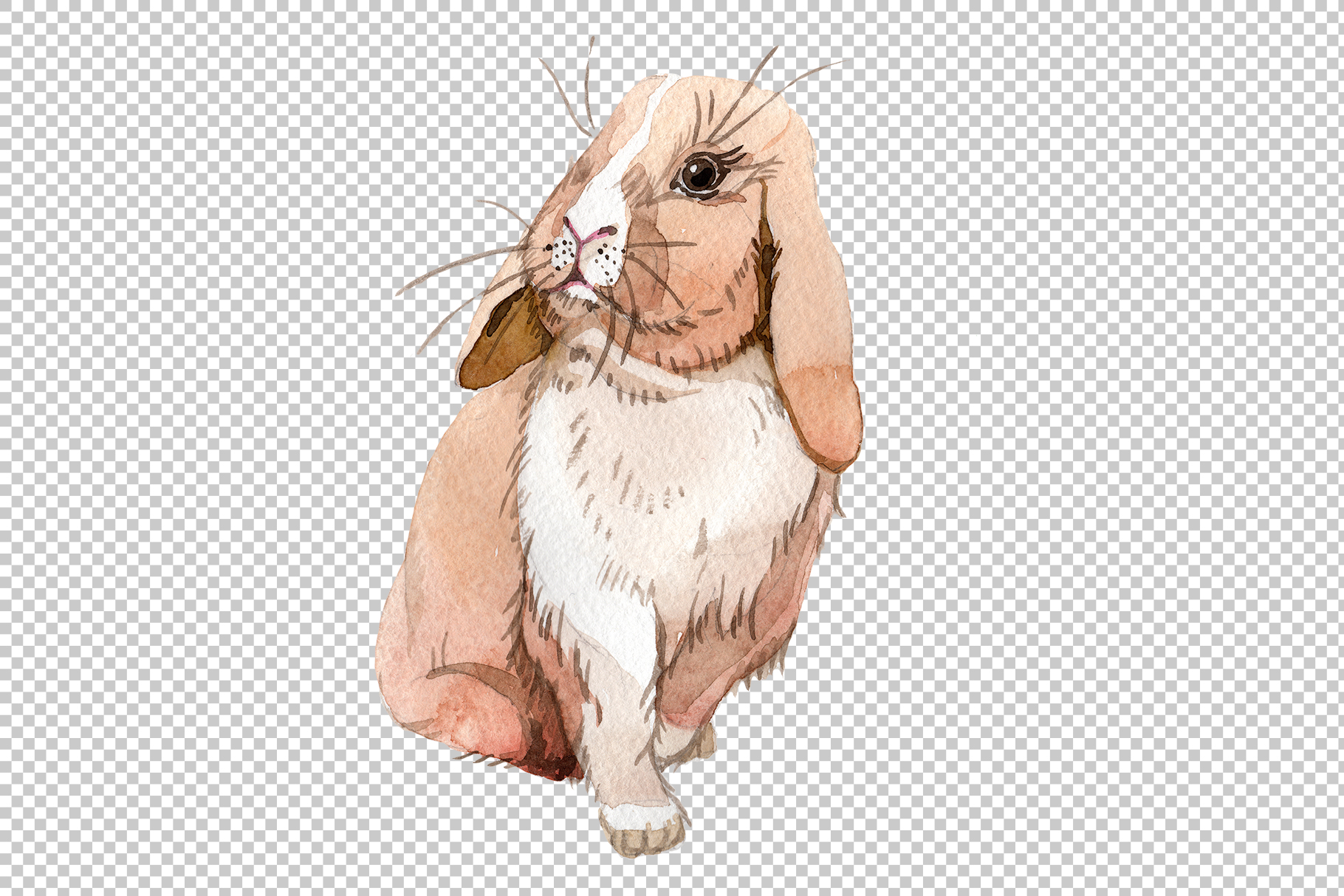 Easter bunny Watercolor png example image 4