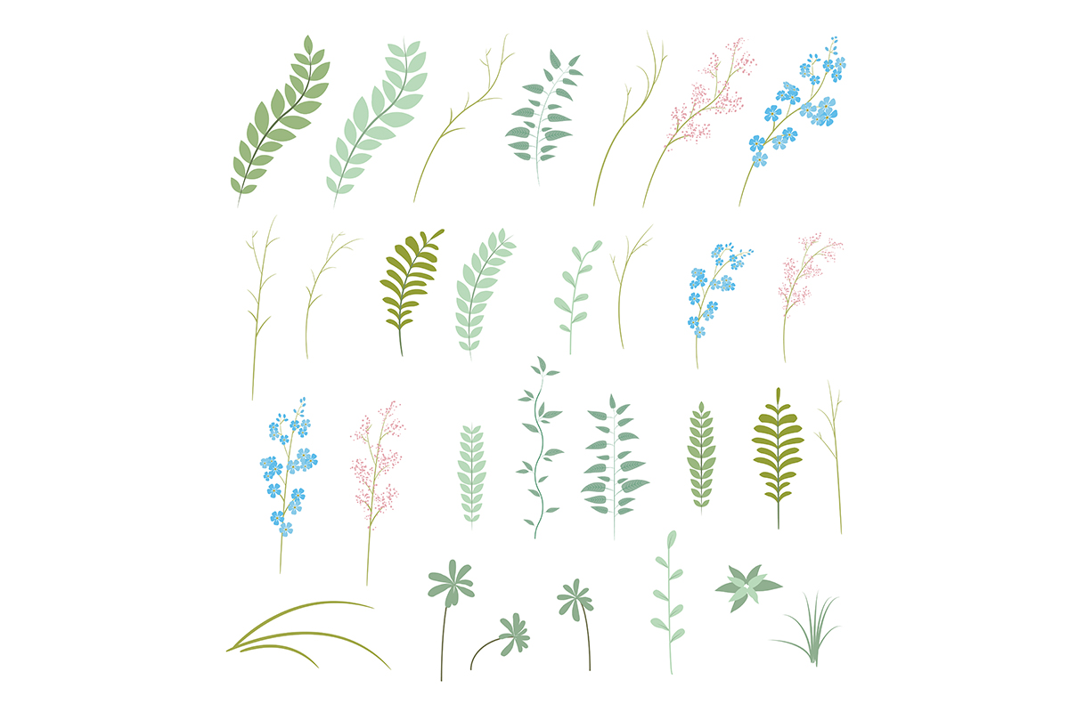 Flower collection. Vector set of plants, flowers and herbs. example image 7