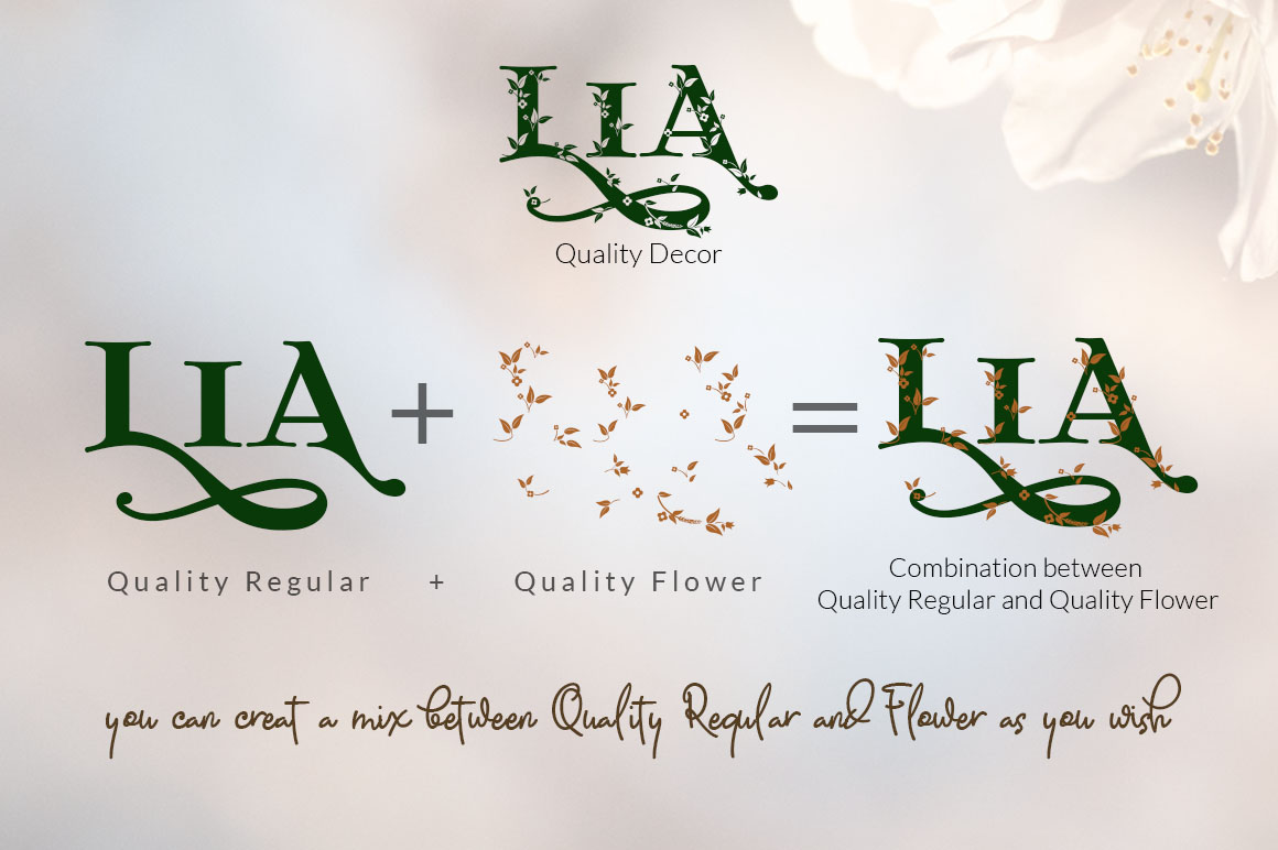 Quality Decorative Font Duo example image 6