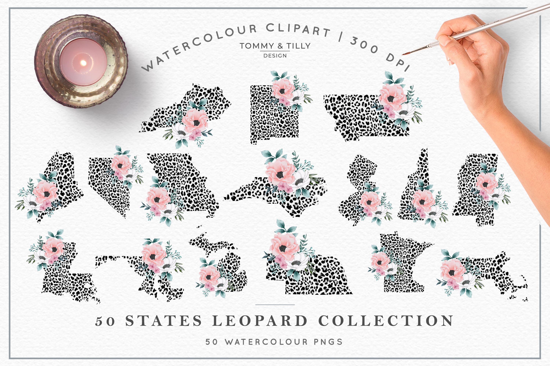 Leopard Print 50 States Bundle - Clipart PNG Sublimation example image 4