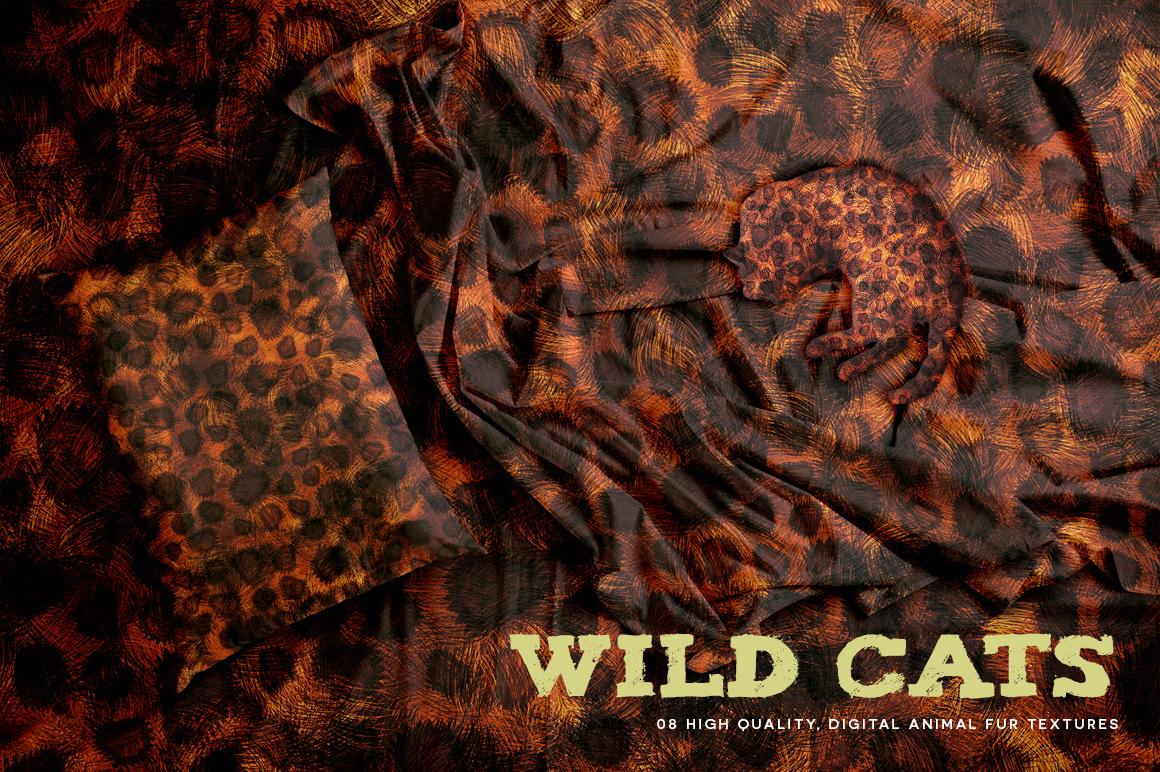 Wild Cats example image 8
