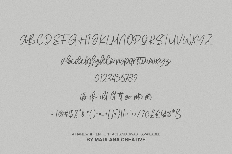 Hartwod Handwritten Font example image 9