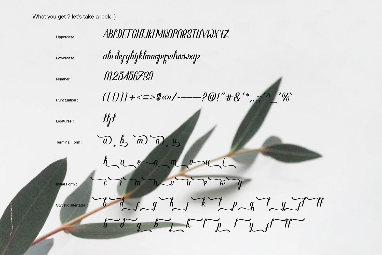 NEW SCRAPER - Script Font example image 14