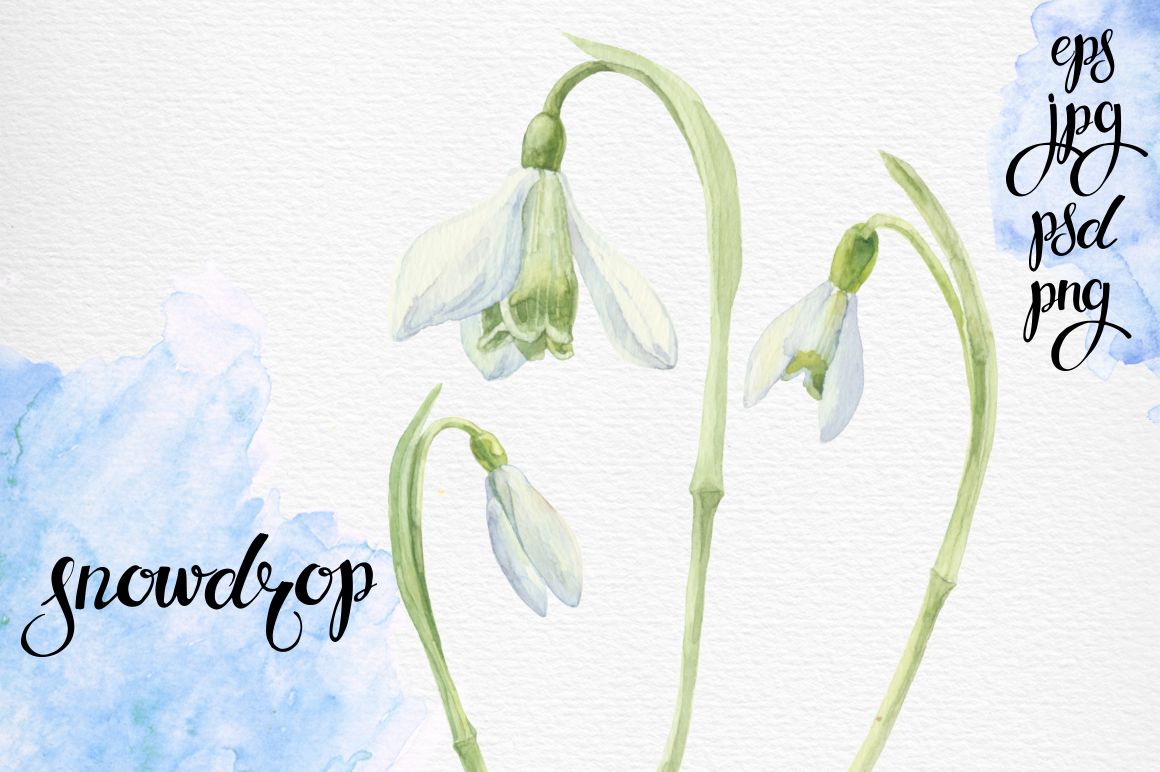 Spring flowers. Watercolor set. example image 2