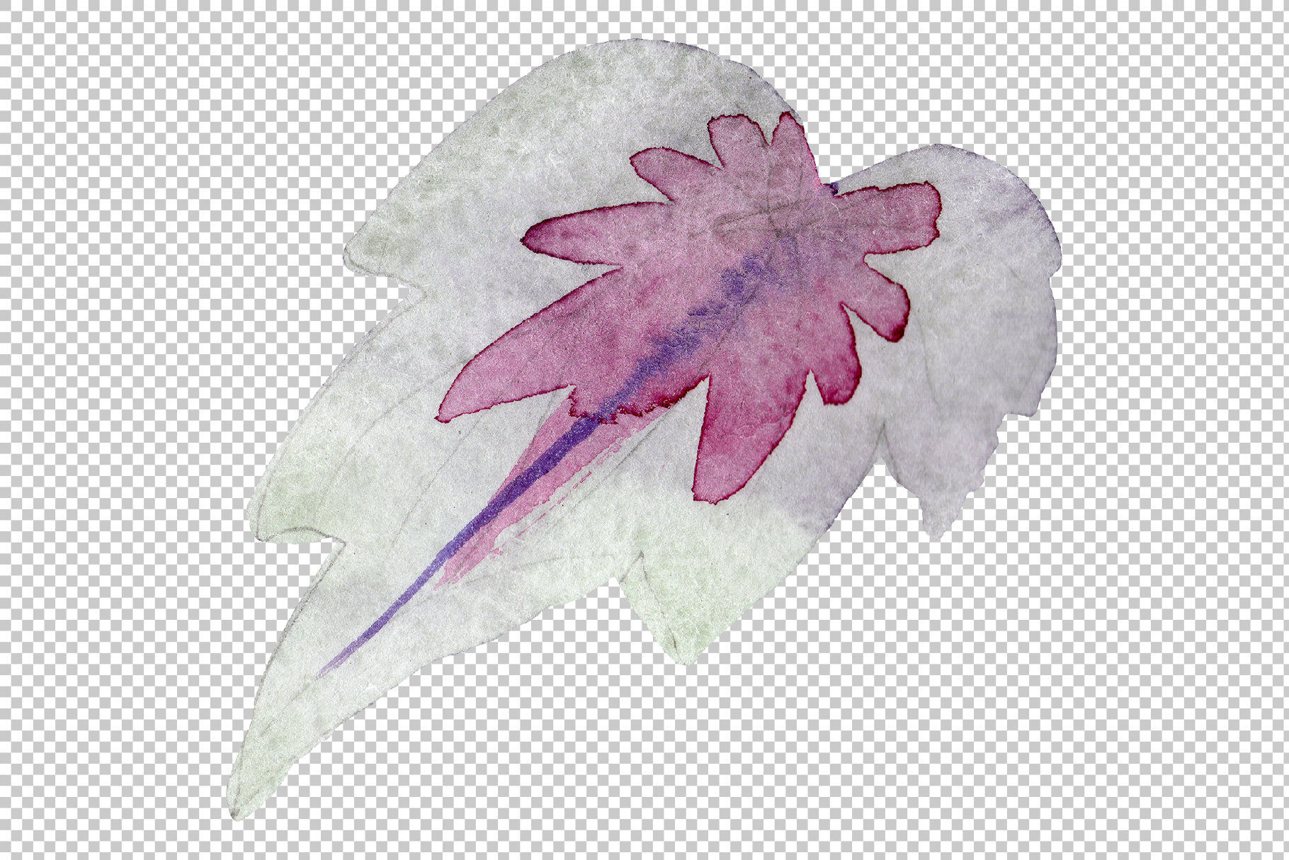 Begonia leaves Watercolor png example image 9
