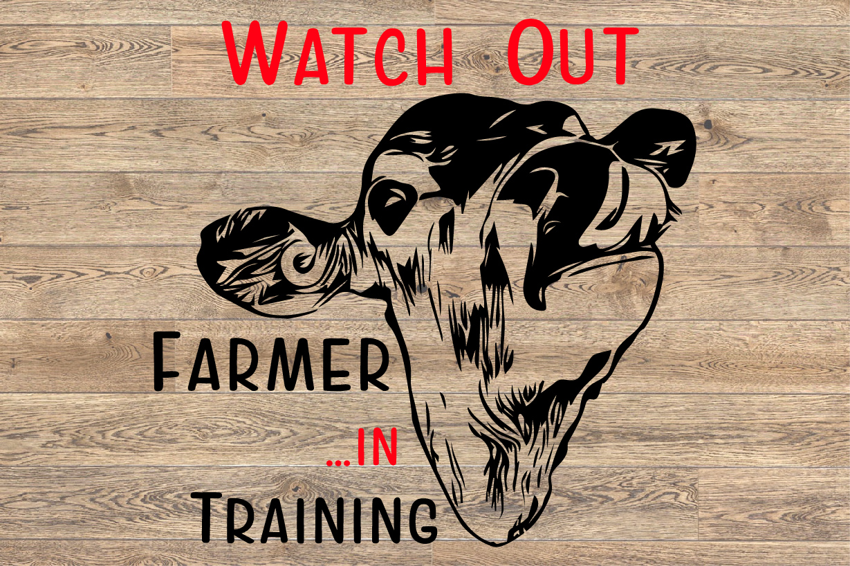 Watch Out Farmer in Training Heifer cattle cow 1387s example image 2