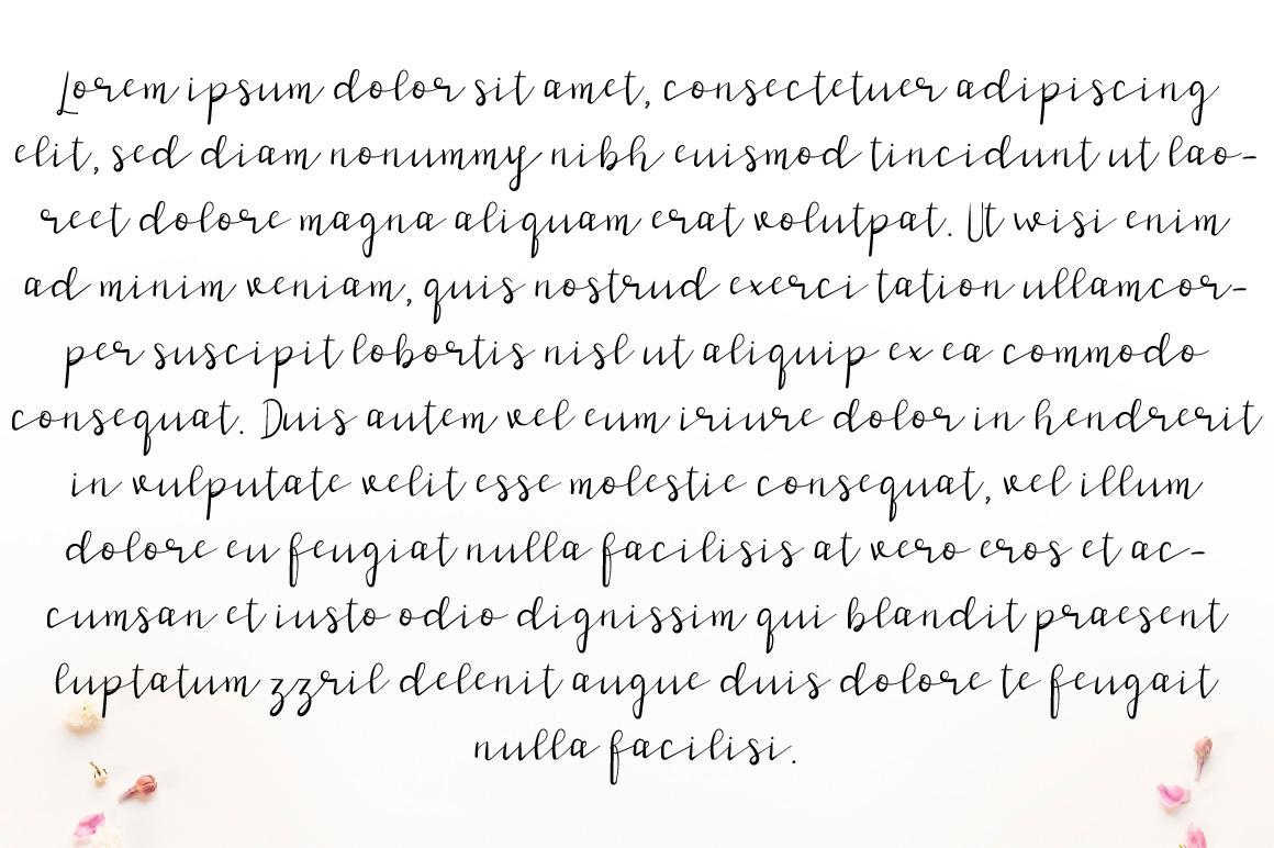 Stark Niche Script Font example image 2
