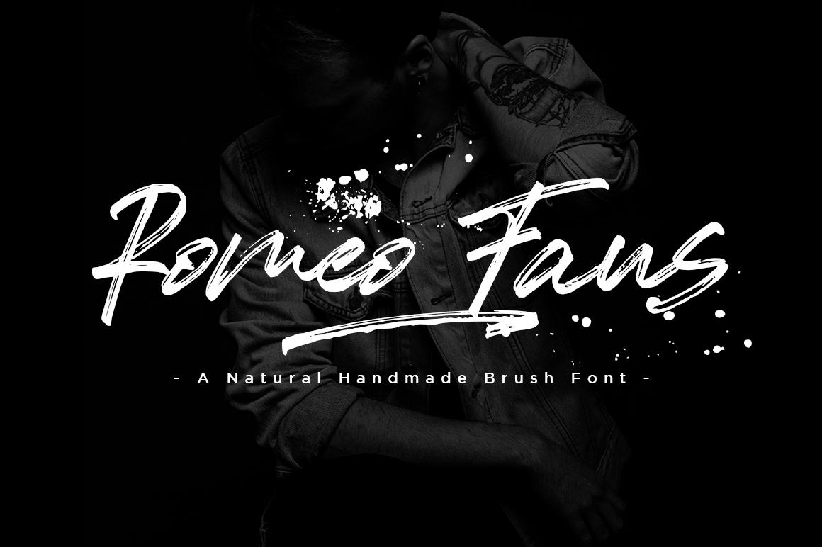 Romeo Fans / Natural Handmade Brush example image 11