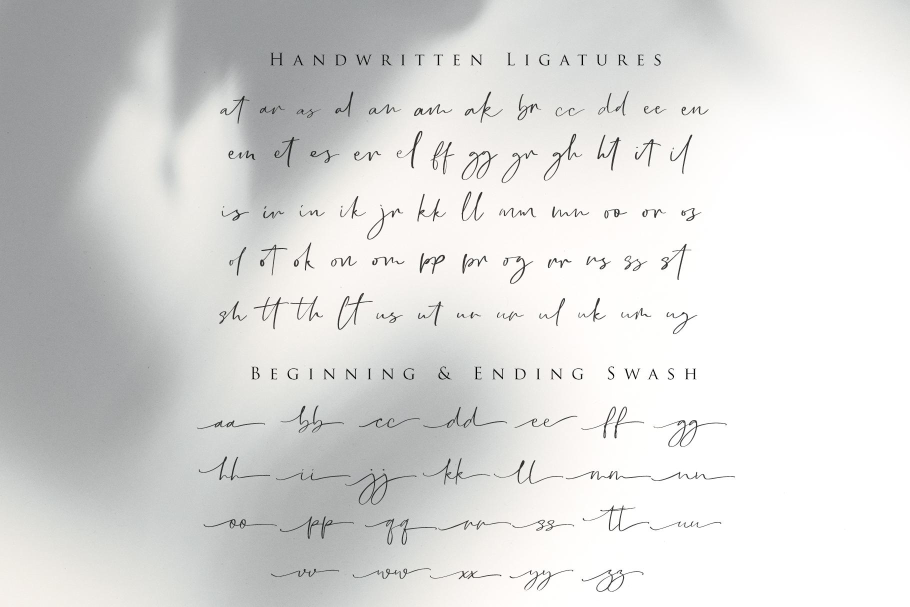 Cllarin - Modern Script Font example image 10