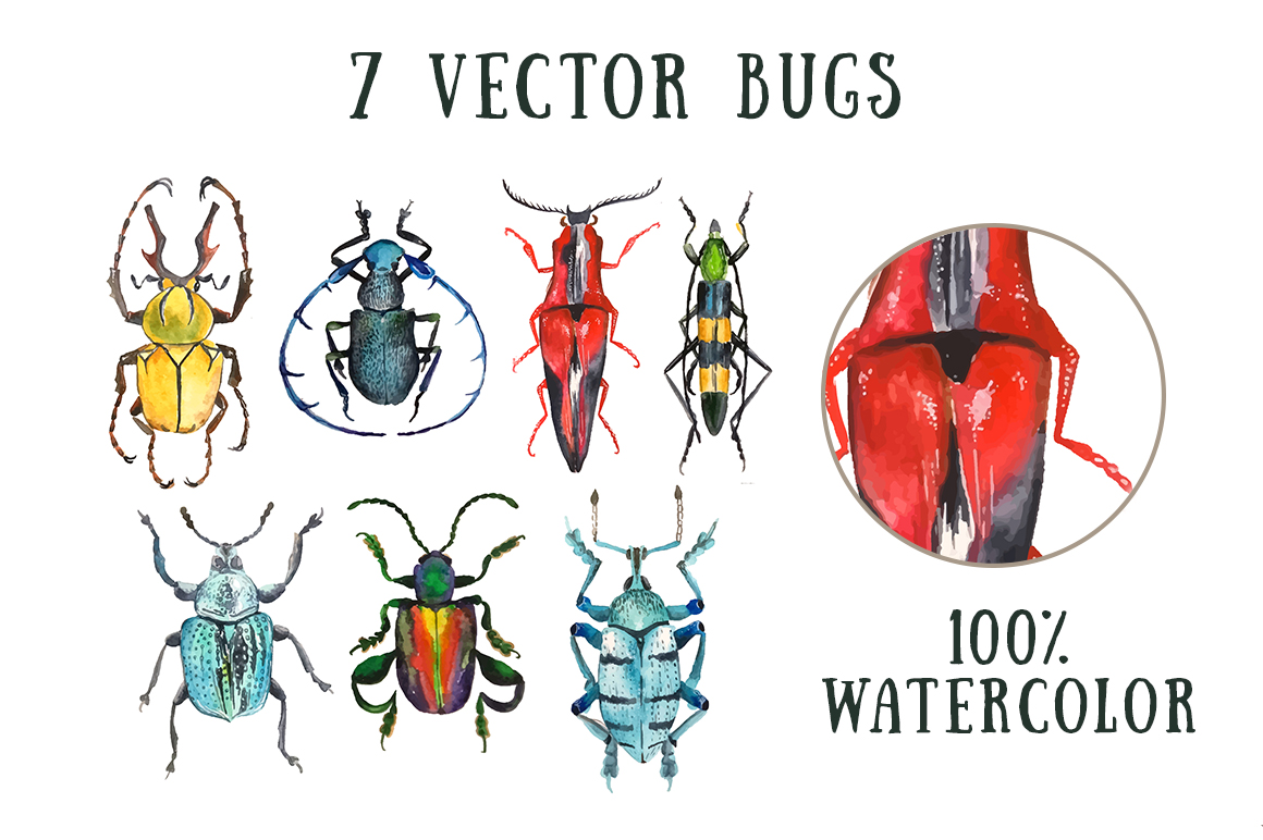 Insectomania - watercolor bugs example image 2