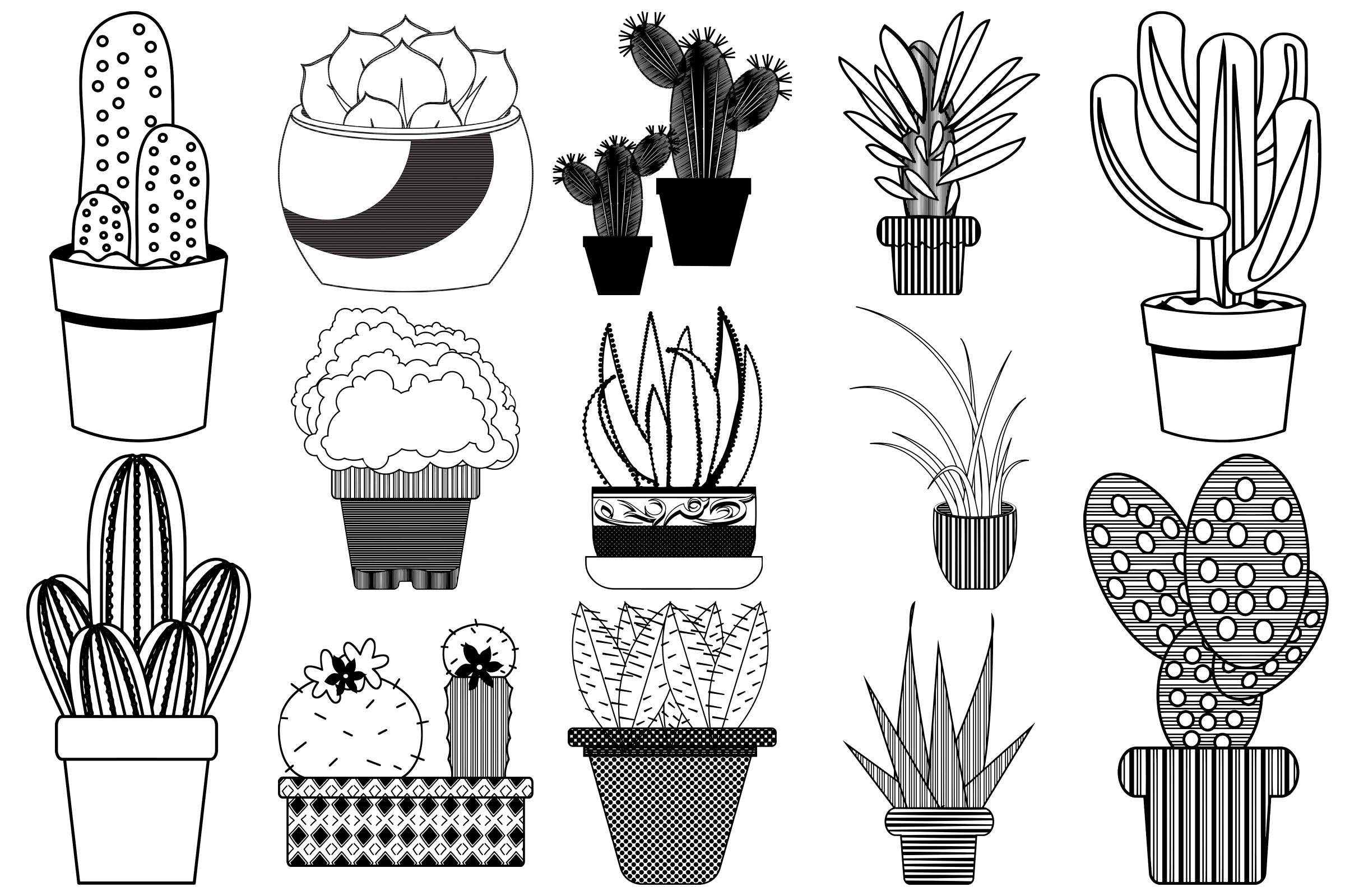 Cactus and Succulents AI EPS PNG, Vector Clip Art example image 4