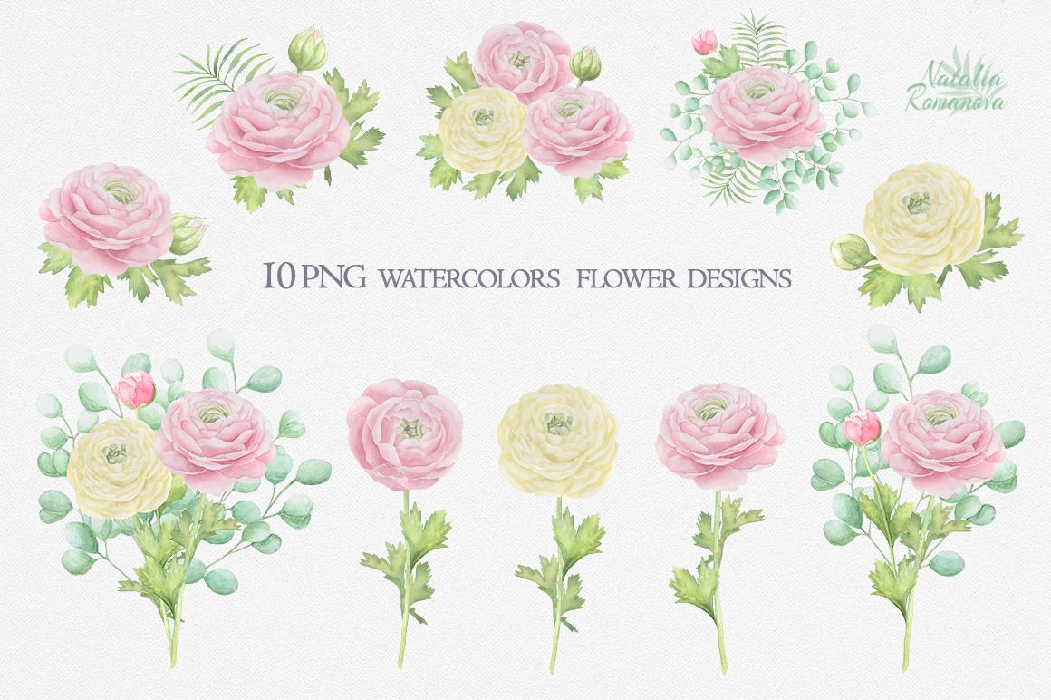 Watercolor ranunculus example image 3