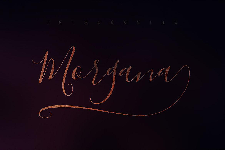 Morgana Script Font example image 5