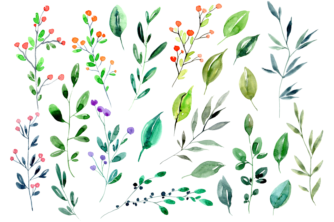 Watercolor branches, leaves 24 PNG files set example image 2