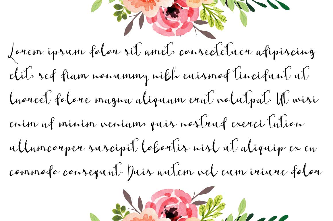 Shaktira Script Font example image 3
