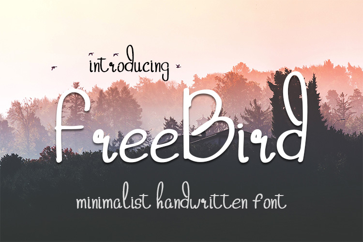 freebird handwritten font example image 1