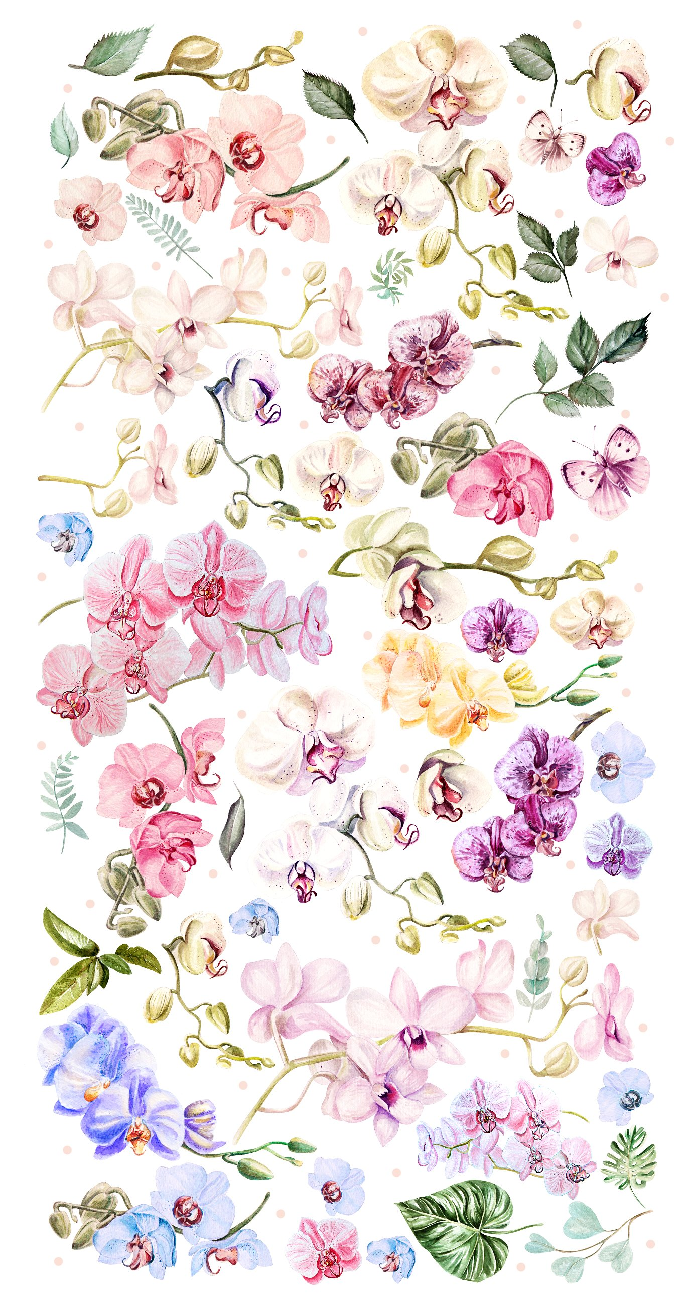 Hand Drawn Watercolor Orchids example image 2