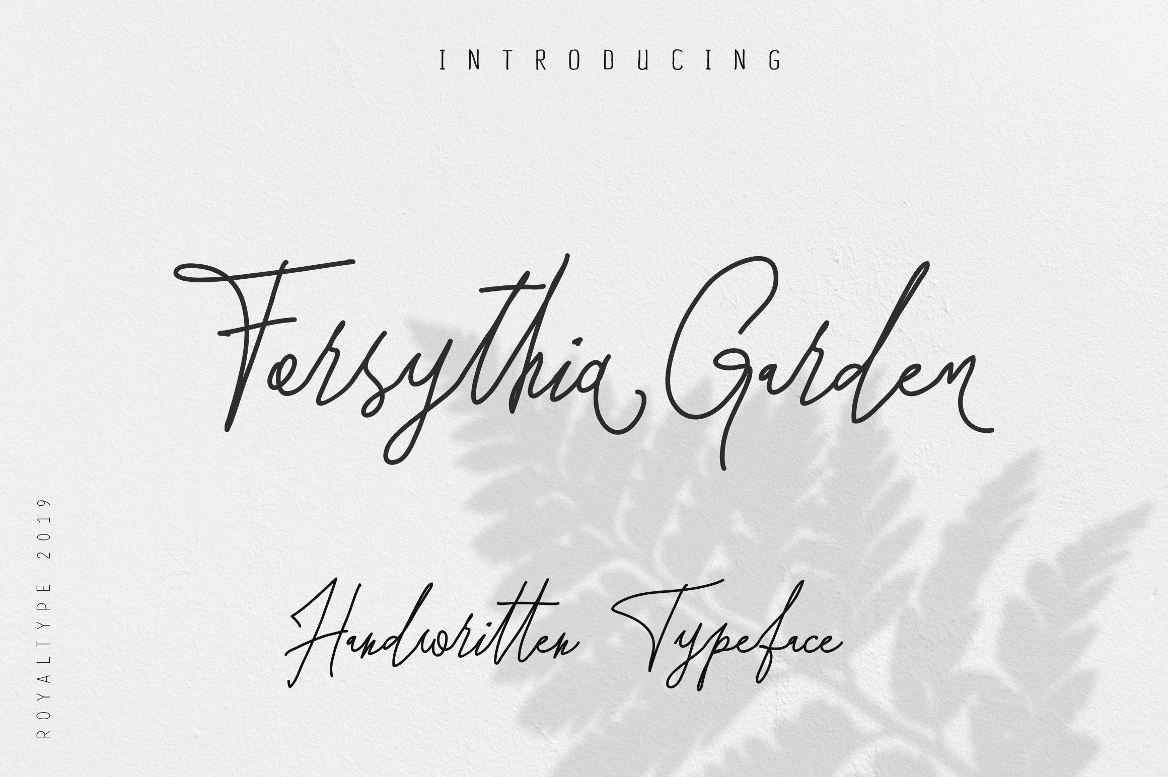 Forsythia Garden |Signature Typeface example image 1